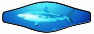 Strap Wrapper Shark
