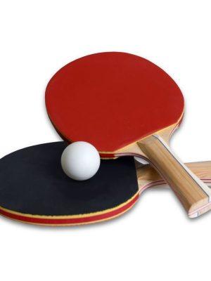 Bounce Tafel tennis / ping pong set