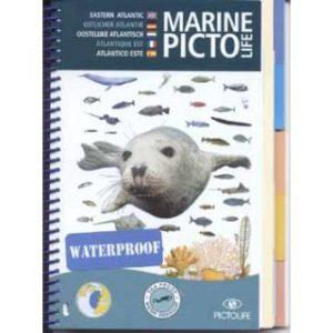 """Marine Picto: """"Oostelijk Atlantisch"""""""