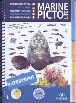 "Marine Picto: ""Mediteraanse Zee"""