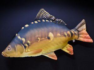 Karper (Carp) 90cm
