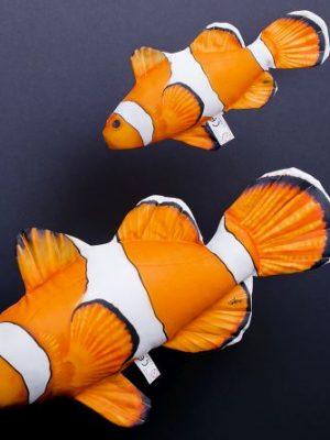 Anemoonvis (Clownfish) (Nemo)