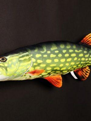 Snoek (Pike) 80cm