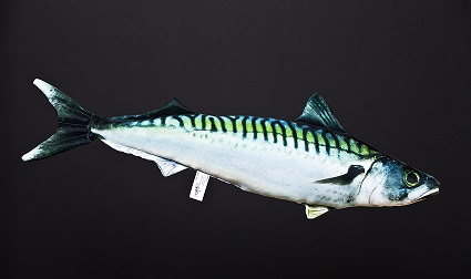 Makreel (Mackerel)