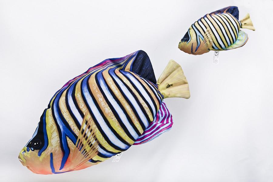 Pauwoogkeizersvis (Regal Angelfish) Knuffel