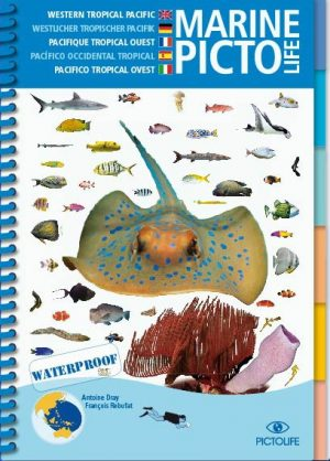 Marine Picto: '' Western Tropical Pacific'
